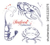Seafood Collection. Hand Drawn...