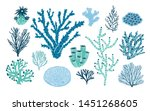 bundle of various corals and... | Shutterstock . vector #1451268605