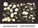 collection of elegant detailed...   Shutterstock .eps vector #1451544332