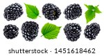 Small photo of Ripe blackberry isolated on white background with clipping path. Fresh summer wild berries closeup. Detailed Blackberry collection with leaves