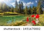 Beautiful Natural Landscape In...