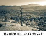 granite rock formations at bald ... | Shutterstock . vector #1451786285