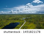 Panoramic view of a walking trail in swamp through the green mosses, bog pines and small lakes with reflections of blue sky and stormy clouds in the Great Kemeri Bog on sunny summer day.