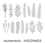 vector set of floral elements.... | Shutterstock .eps vector #1452296825