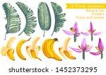 Tropical Collection. Banana...