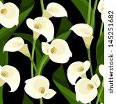 telón de fondo,fondo,hermosa,belleza,color beige,negro,bloom,flor,botánica,calla,composición,continua,decoración,decorativos,elegante