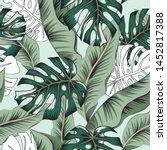 tropical green banana  monstera ... | Shutterstock .eps vector #1452817388