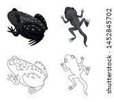 vector design of wildlife and... | Shutterstock .eps vector #1452845702