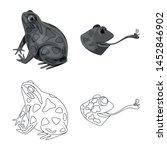 vector illustration of wildlife ... | Shutterstock .eps vector #1452846902