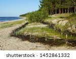 Wicker Fences On The Beach For...