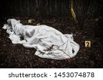 Small photo of Victim of a violent crime under a sheet in a rural yard. With evidence markers.