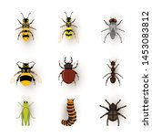 various insects flat vector... | Shutterstock .eps vector #1453083812