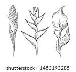 vector set of floral elements.... | Shutterstock .eps vector #1453193285