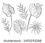vector set of floral elements.... | Shutterstock .eps vector #1453193288