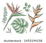 vector set of floral elements ... | Shutterstock .eps vector #1453194158