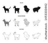 vector illustration of breeding ... | Shutterstock .eps vector #1453333442