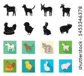 vector illustration of breeding ... | Shutterstock .eps vector #1453346378