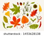 Hand Drawn Big Vector Set Of...