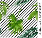 palm beach tree leaves.... | Shutterstock . vector #1453659332