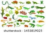 Reptiles amphibians icons set. Cartoon set of reptiles amphibians icons for web design