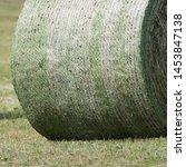 Small photo of Detail of the green and white colored round bale net around a silage bale. The silage is compressed and bounded by a baler