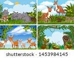 set of various animals in... | Shutterstock .eps vector #1453984145