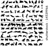 Stock vector  silhouettes of big and small cats 14539966