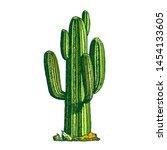 saguaro arborescent tree like...