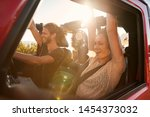 excited millennial friends on a ... | Shutterstock . vector #1454373032