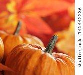 close up of pumpkins and autumn ... | Shutterstock . vector #145442236