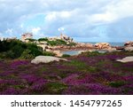 Small photo of Beautiful field of wild flowers with the Phare de Ploumanac'h (officially the Mean Ruz Lighthouse) at the background, Cote de Granite Rose or Pink Granite Coast, Brittany, France