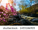 Small Stormy River With...