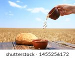 Woman Pouring Wheat Grains From ...
