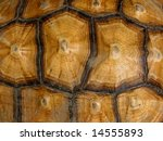 Stock photo tortoise shell pattern 14555893