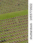 Verdun  France   06 23 2019  ...