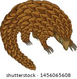 cute pangolin cartoon vector... | Shutterstock .eps vector #1456065608