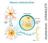 neural communication.... | Shutterstock .eps vector #1456461275