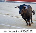The bull running during a bullfight in Madrid. Plaza de Toros de las Ventas. Spain