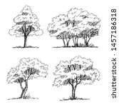 tree sketch   set of hand drawn ... | Shutterstock .eps vector #1457186318