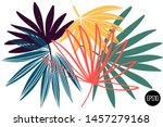 vector set of drawn palm leaves ... | Shutterstock .eps vector #1457279168