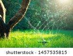 Garden  Grass Watering. Smart...