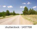 road in the summer forest - stock photo