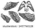 wing of bird or angel  hand... | Shutterstock .eps vector #1457760128