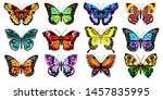 Stock vector collection of vector decorative butterflies set of bright colorful butterflies on a white 1457835995