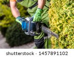 Shaping Garden Trees with Powerful Gasoline Hedge Trimmer Equipment. Gardener with Power Tool. - stock photo