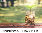Small photo of green plant growing on golden coin in glass jar on wood table in park with blur nature background. business financial banking saving concept. investment profit income. marketing startup success.