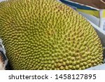 Small photo of Durian, or durione or jackfruit. large exotic green and yellow fruit with spikes, the most malodorous fruit. smelly food.