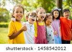 multi ethnic group of school... | Shutterstock . vector #1458542012