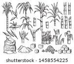 Sugar Plant. Agriculture...