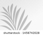 the transparent shadow overlay... | Shutterstock .eps vector #1458742028